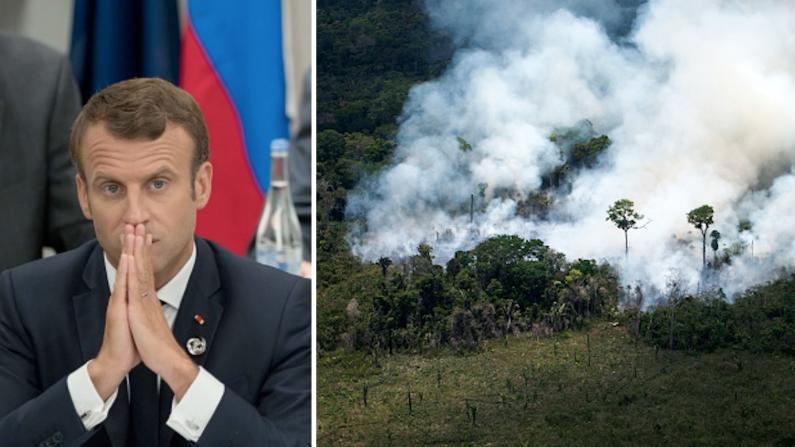 Scientifiquement, la forêt amazonienne n'est pas le « poumon de la planète » – loin de là Amzo10