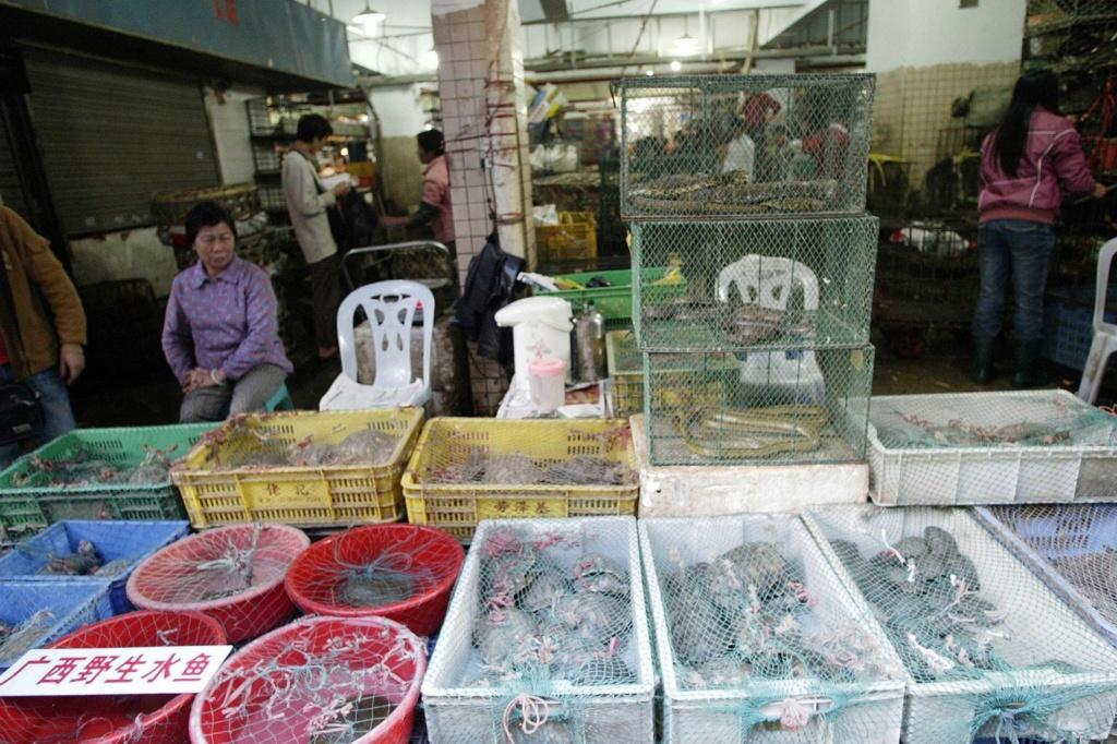Chine : Interdiction définitive de la consommation d'animaux sauvages Corono10