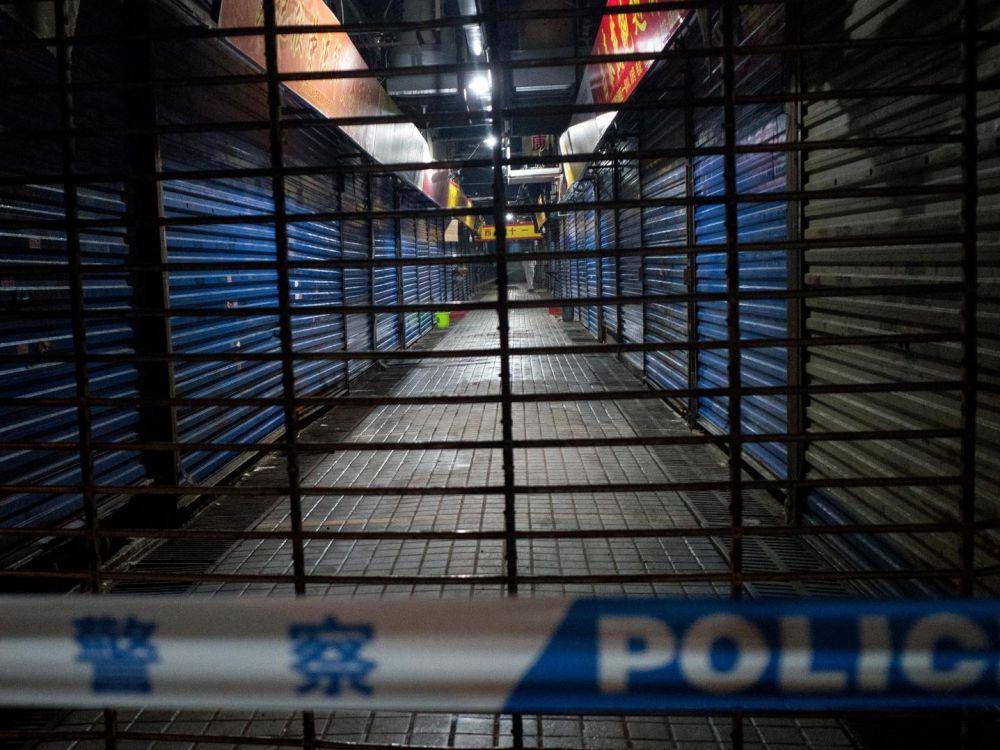 Viande de rat, de crocodile, de louveteau : l'étrange marché chinois soupçonné d'être au cœur du virus Cover-12