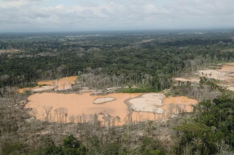 Préservation de la biodiversité : la laissée-pour-compte des politiques ? Fc_tif10