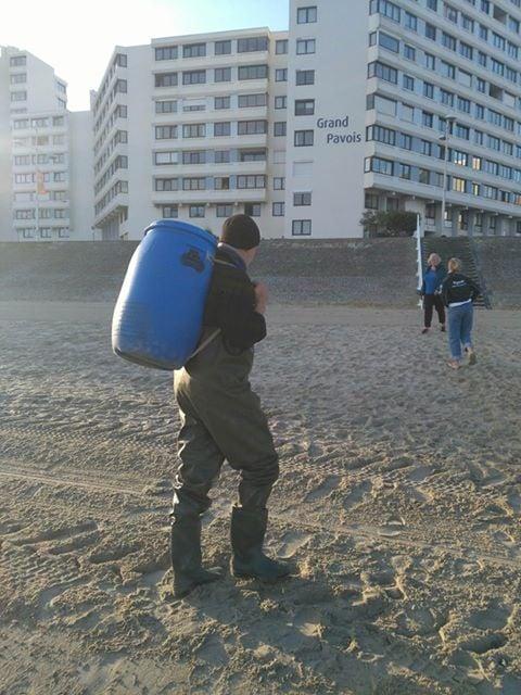 Plage de Dunkerque : acte de barbarie sur un phoque ce matin. Sea Shepherd France dépose plainte. Phoque11