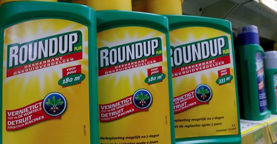Roundup : Bayer condamné à payer 2 milliards de dollars à un couple américain Safe_i12