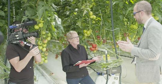 « Cash Investigation » : comment les multinationales font leur beurre sur nos fruits et légumes Safe_i40