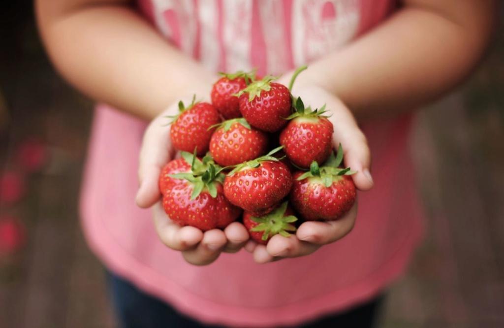 Femmes exploitées et violées : Le vrai coût des fraises importées d'Espagne Skyla-10