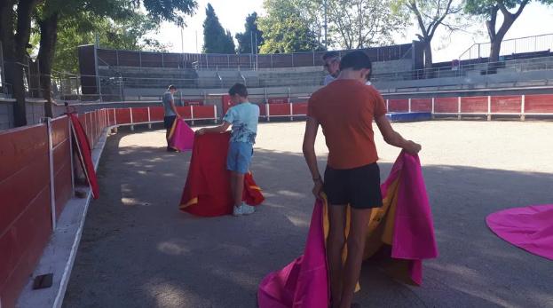 Le centre français de tauromachie révolté par la menace d'interdiction des corridas aux mineurs Toro_t10