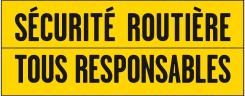Mise en œuvre des décisions du CISR concernant les piétons et l'alcool Tous_t10