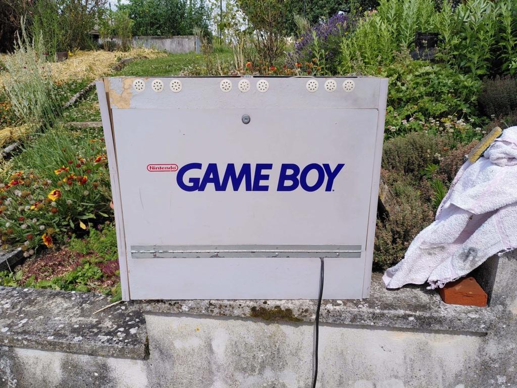 Borne Double Gameboy Receiv14