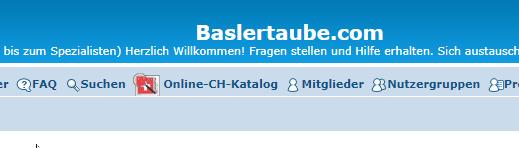 Online-CH-Katalog 2020-113
