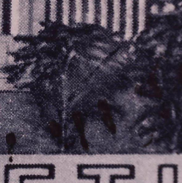 SBK 212 (Mi 322) Völkerbundspalast 212_2_11