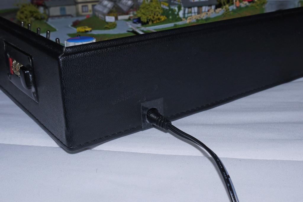 Pequeña maqueta en maletín - Página 4 P1070711