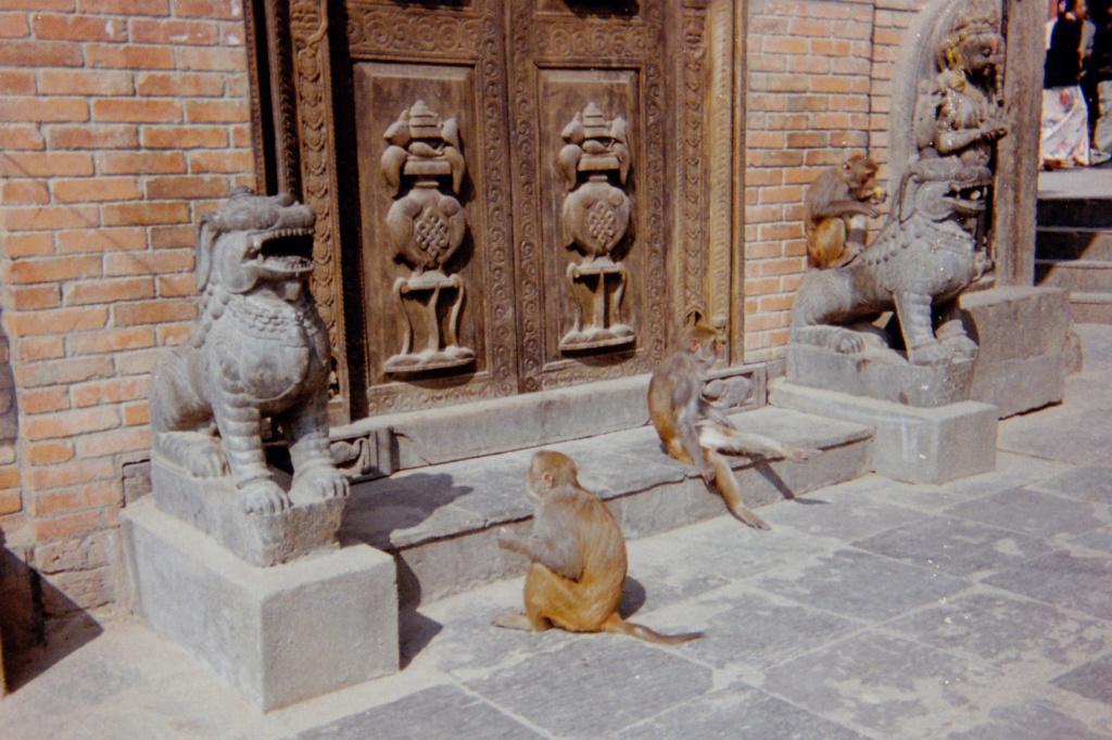 La symbolique des animaux dans le Bouddhisme . Mf_02410
