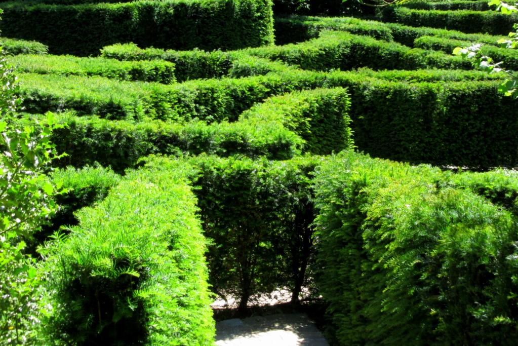 Le symbole du labyrinthe depuis la nuit des temps Red_0610