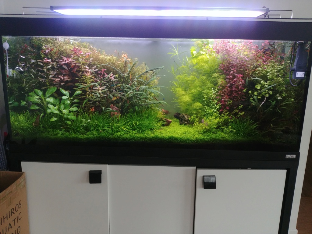 400L dry start method 2eme volet - Page 4 20190412