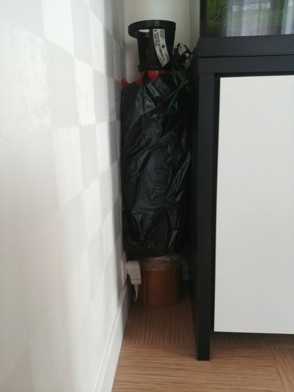 Fluval Roma 240 planté/aquascape 20190425