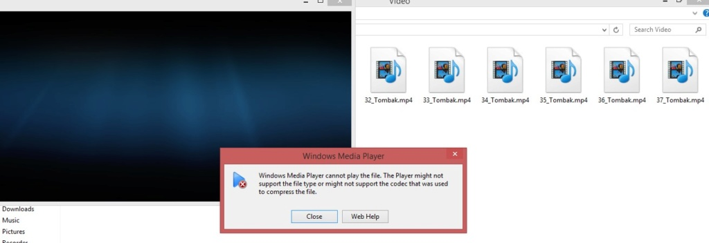 Can not watch Mp4 after installation Web-he10