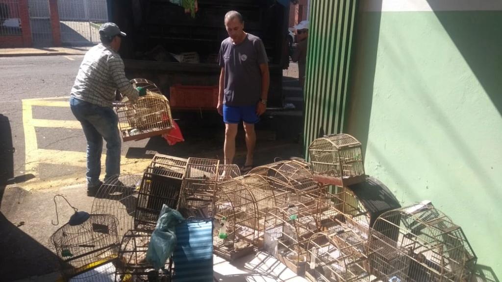 Polícia Ambiental apreende 529 aves e aplica R$ 612,1 mil em multas em seis meses 1_110