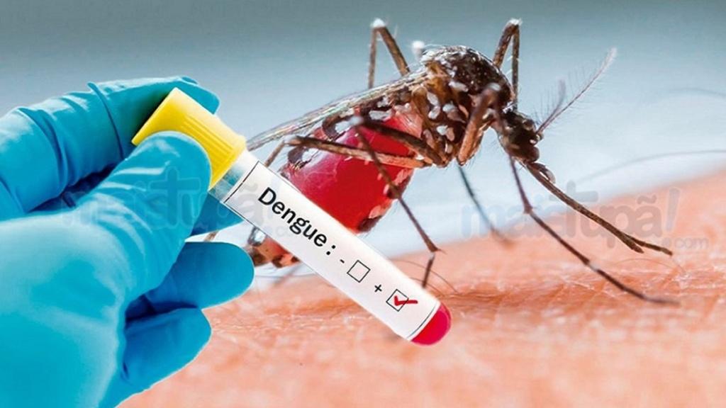 São João registra 99 casos de dengue Dengue10