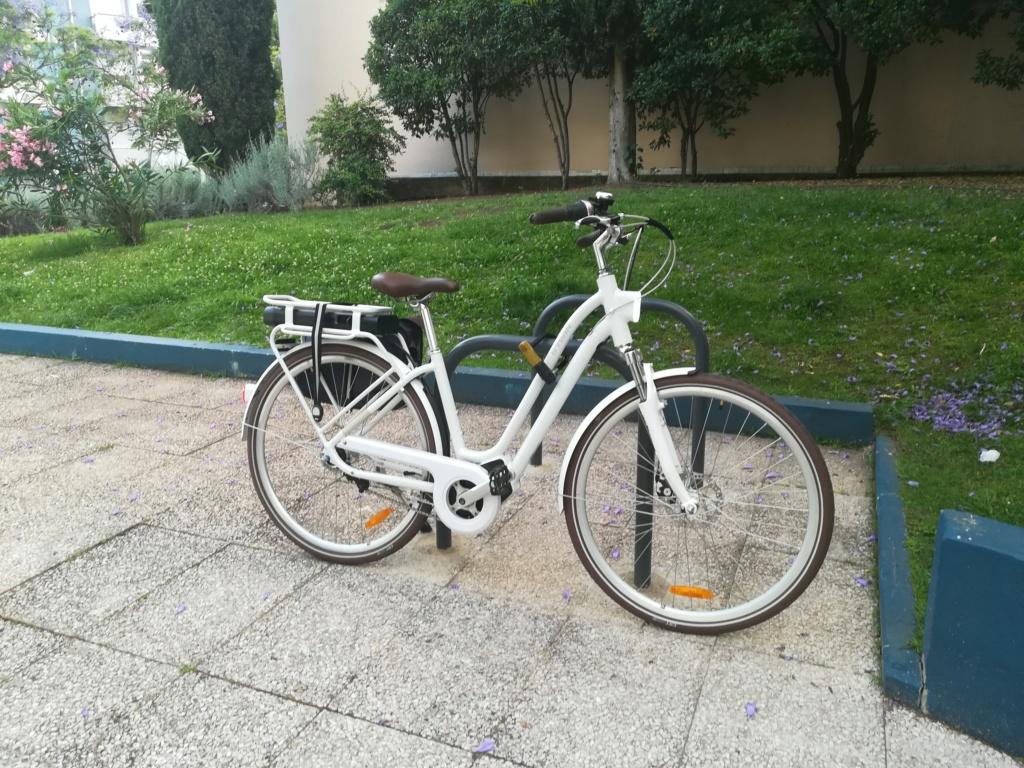 As minhas bicicletas 2019-040