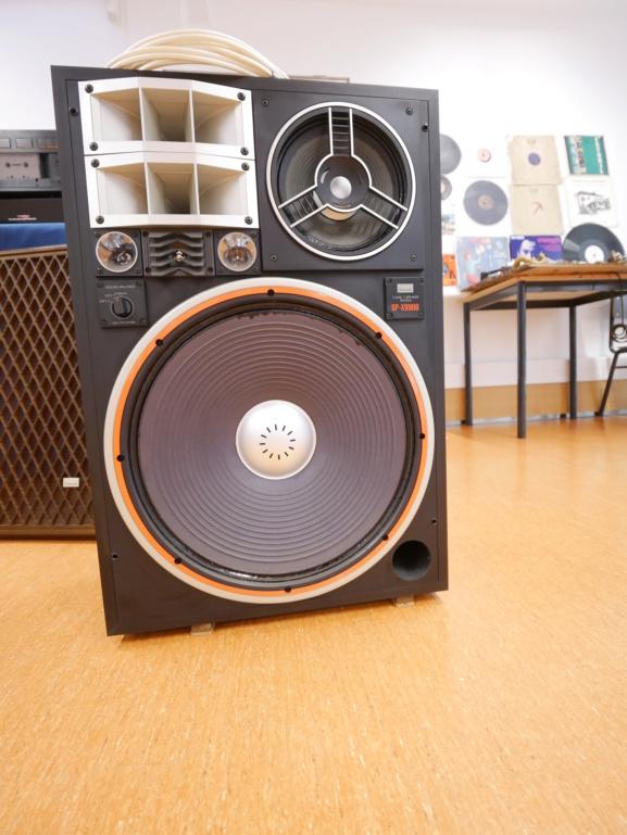 Audio Vintage/Portugáudio 2019-Inicio P1090315