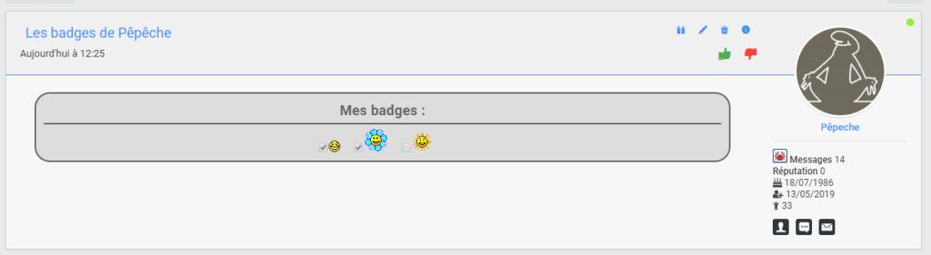 Afficher une liste de badges sur le profil du membre Msg-ba10