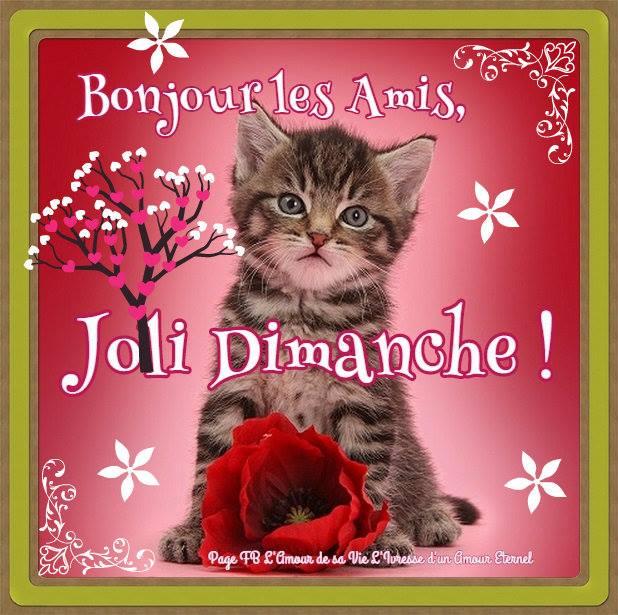 Les bonjours et contacts jounaliers du Mois de Mai 2019 - Page 2 Dimanc10