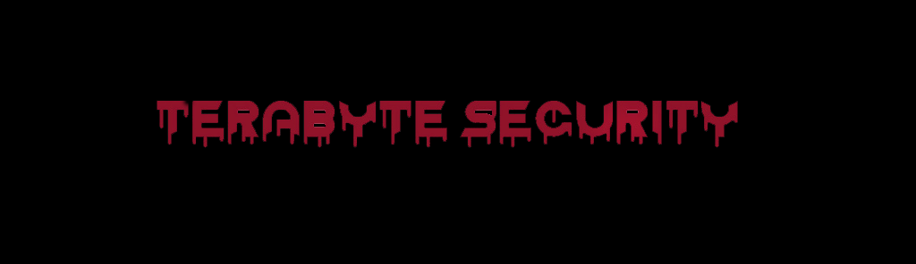 TeraByte Security