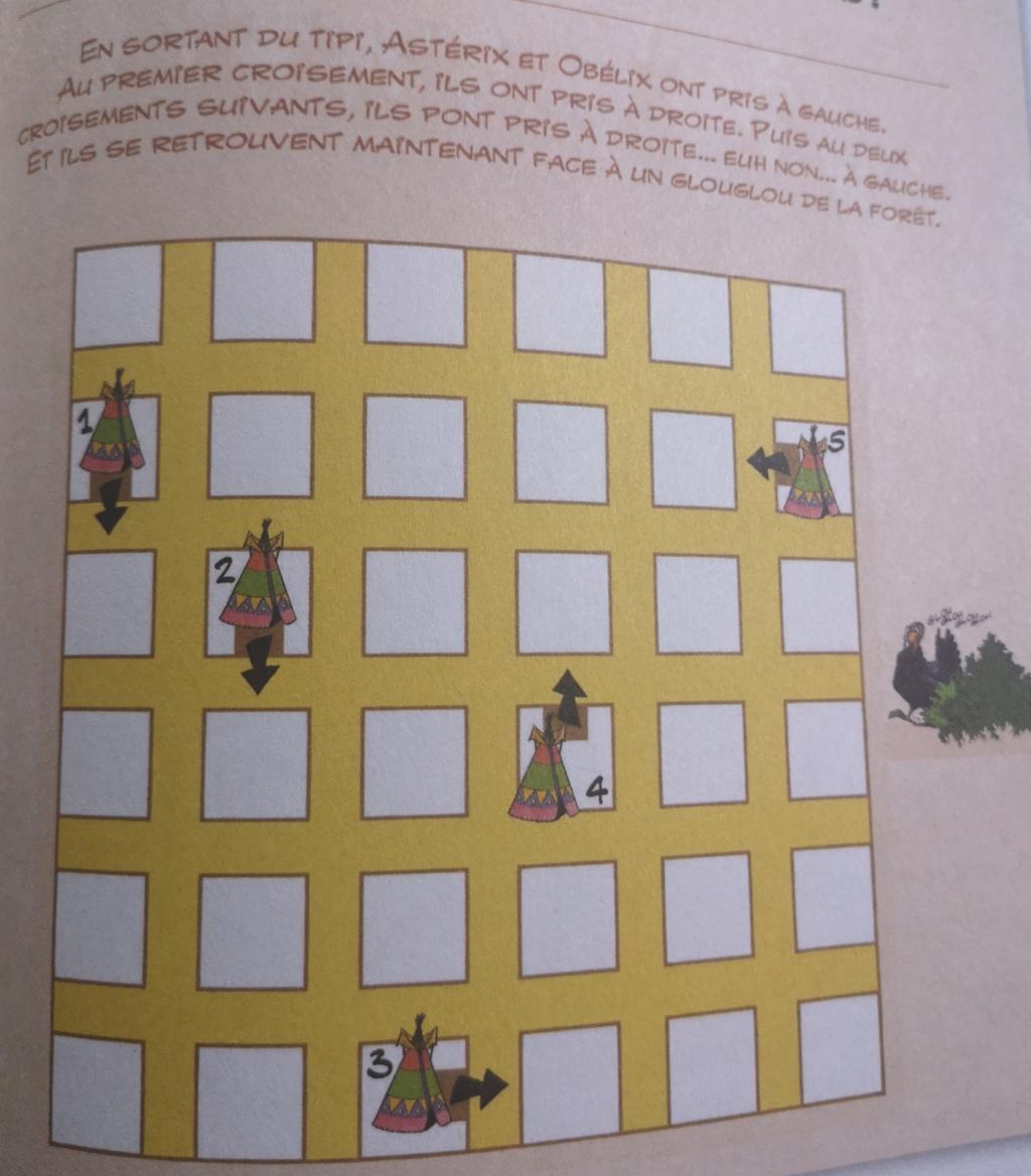 Mes dernières acquisitions Astérix - Page 6 Img_2234