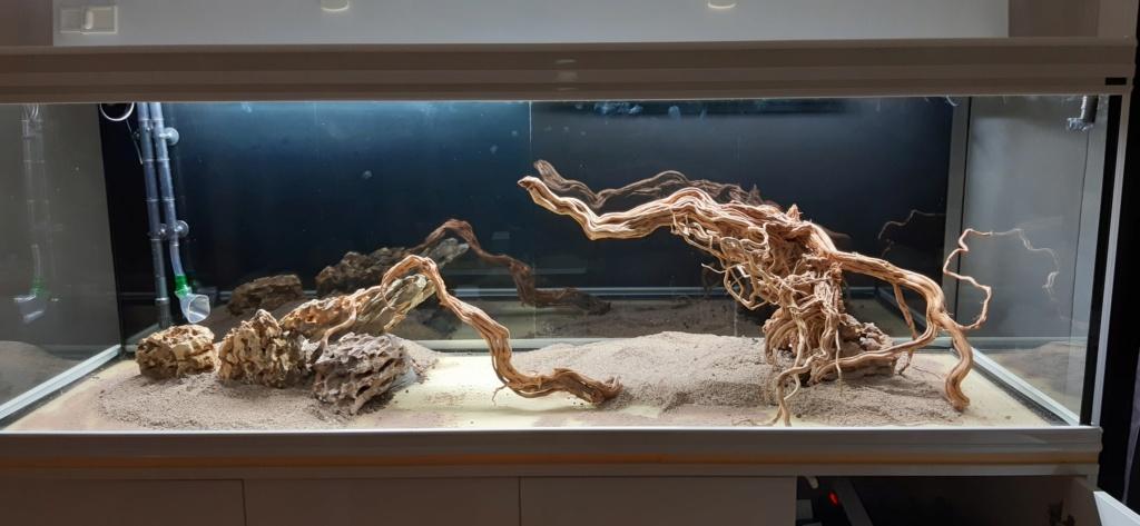 Aquarium de ludovic 840 litres  20201058