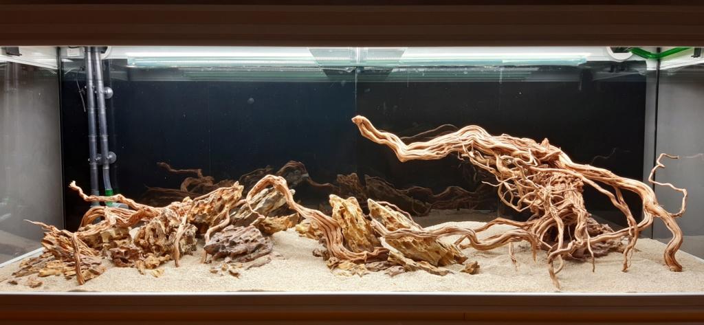 Aquarium de ludovic 840 litres  20201059