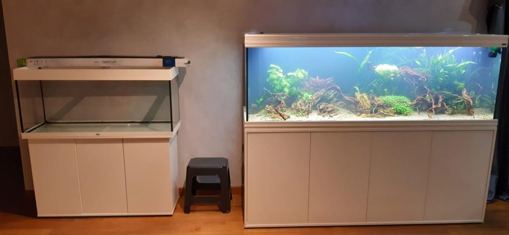Aquarium de ludovic 840 litres  20201145