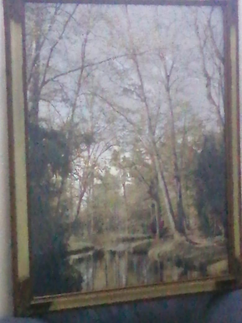 بيع وشراء لوحات فنيه قديمه  - صفحة 2 Img-2010