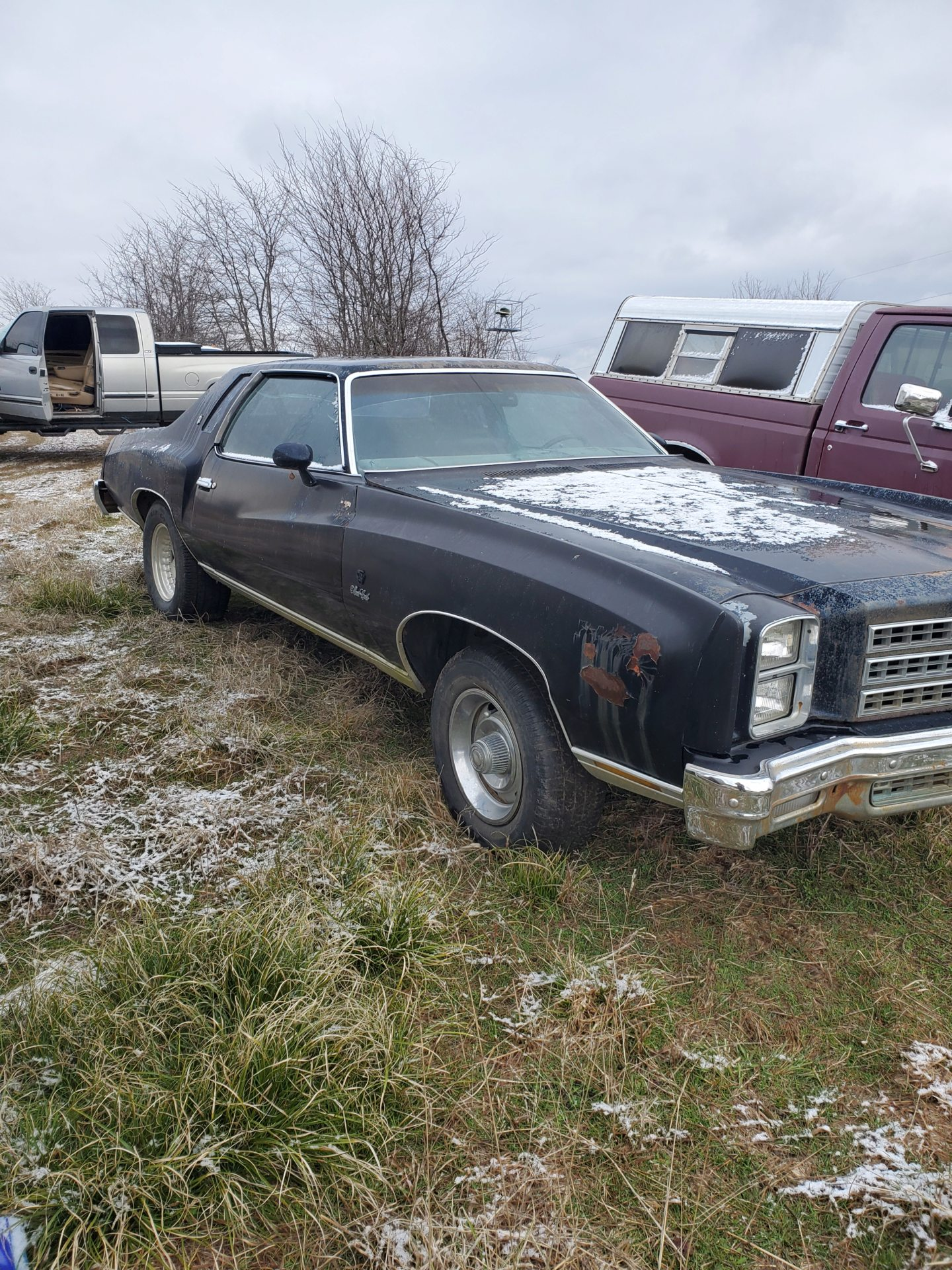 New from Oklahoma. 76 monte 20200211