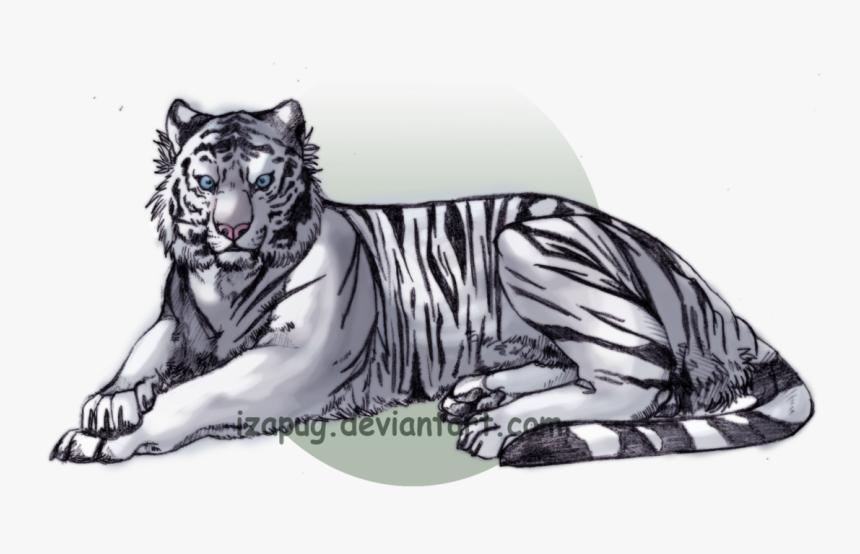 Nixalba the white Tiger 162-1610