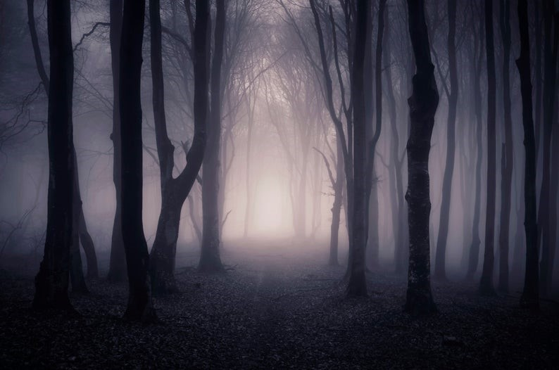 Elysium: Sombras em Nevriande (D&D 3.5) Forest10