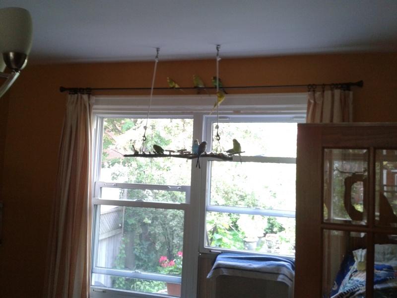 Deux petits bricos:Une échelle à cordes et un jouet suspendu Brico_12