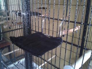 Deux petits bricos:Une échelle à cordes et un jouet suspendu Brico_13