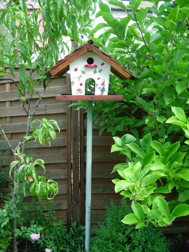 ma cabane à oiseaux Cabane11