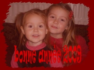 Jeudi 1er Janvier 2009... Bonne Année !!!!! Copie_10
