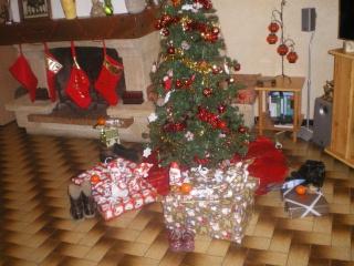 Photos Noël 2008-Jour de l'An 2009! Imgp1414
