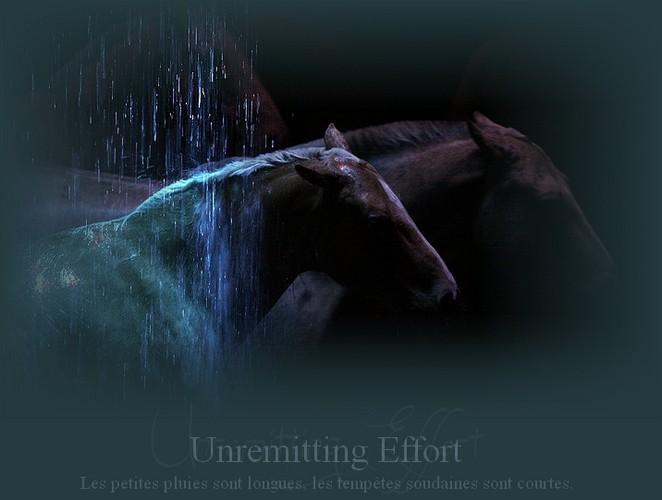 # Unremitting Effort - La haine vient de la ressemblance.