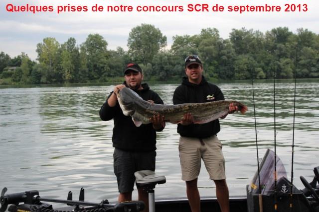 Quelques poissons du concours SCR Celine15