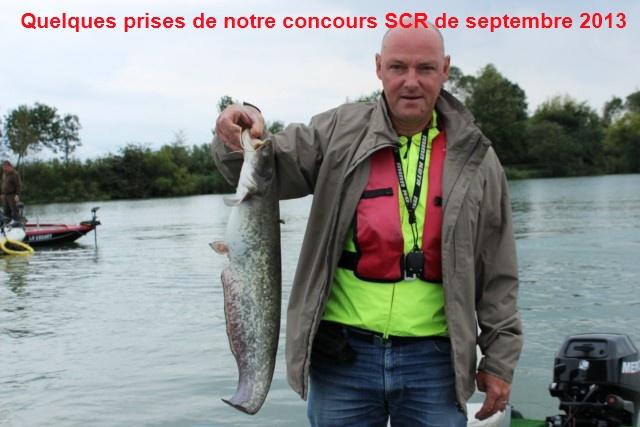 Quelques poissons du concours SCR Celine18