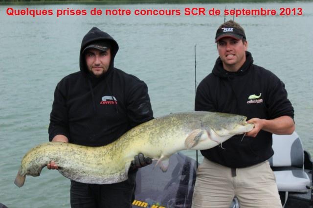 Quelques poissons du concours SCR Celine19