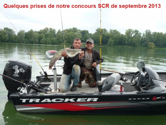 Quelques poissons du concours SCR Concou15
