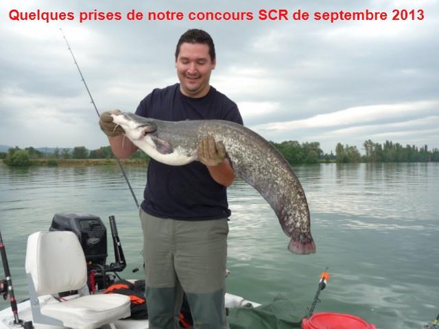 Quelques poissons du concours SCR Concou16