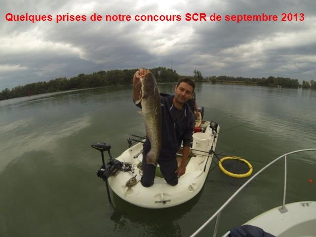 Quelques poissons du concours SCR Gopr0011