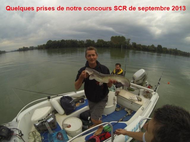 Quelques poissons du concours SCR Gopr0012