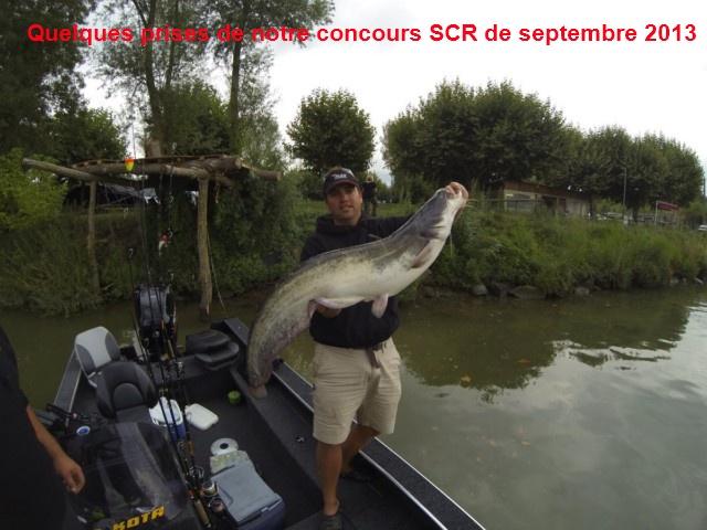 Quelques poissons du concours SCR Gopr0013