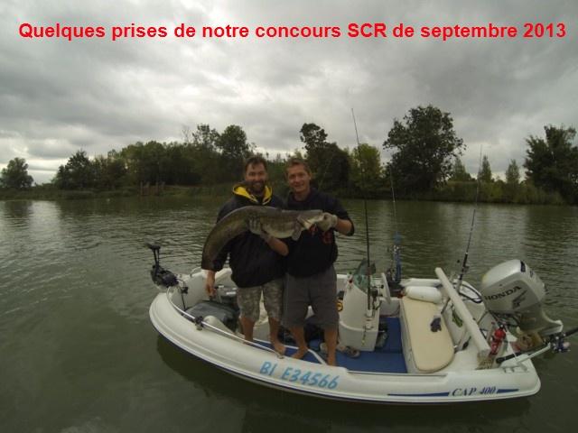Quelques poissons du concours SCR Gopr0015