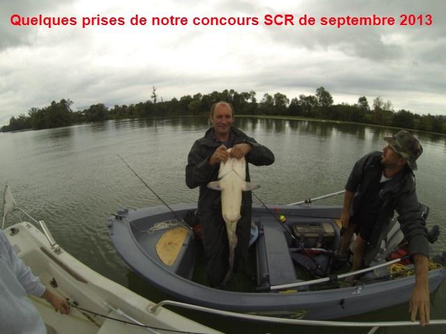 Quelques poissons du concours SCR Gopr0017